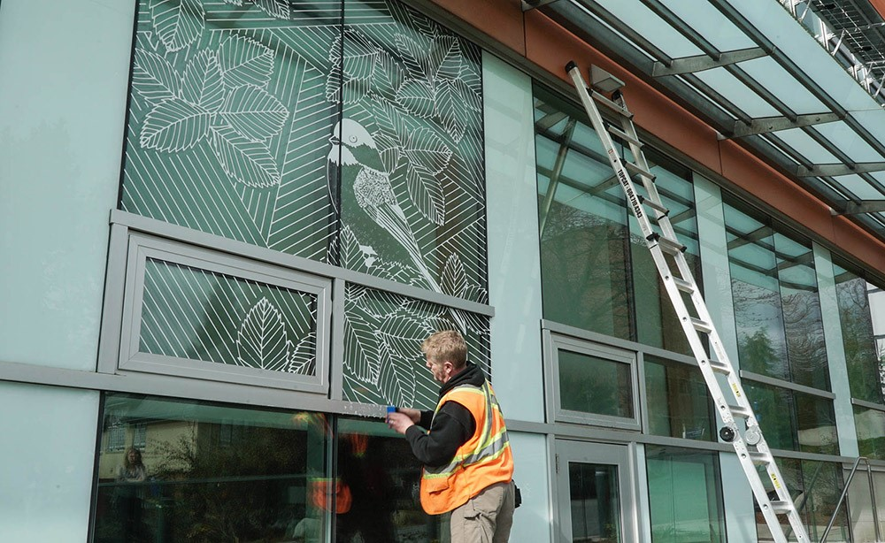 Window art is installed outside the Loop Cafe. Photo by Corim De Guzman.
